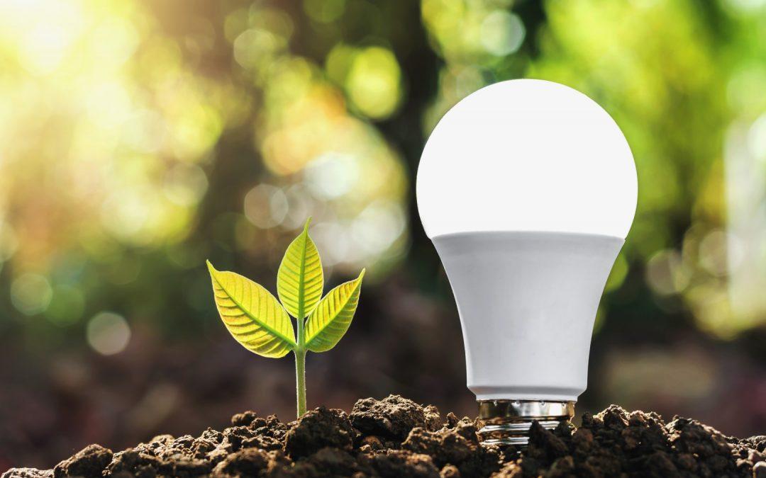 As Principais Fontes de Energia Renováveis da Atualidade